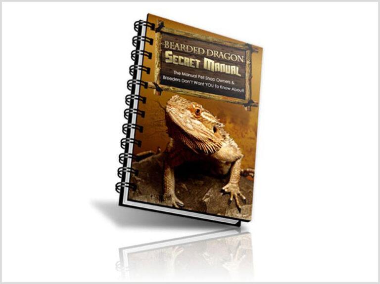 Bearded Dragon Secret Manual Review