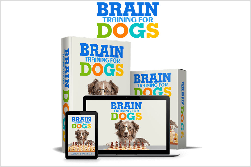 Adrienne Faricelli's Brain Training for Dogs Review – Does It Still Work In 2021