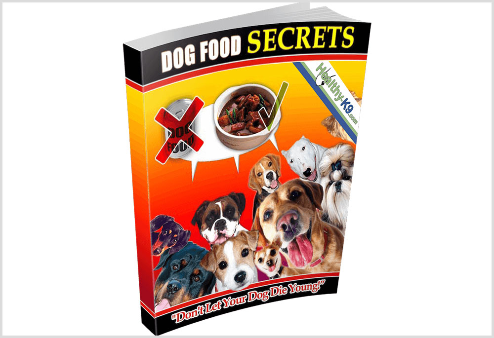Dog Food Secrets by Andrew Lewis